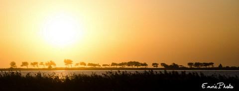 Couché de Soleil sur la brousse