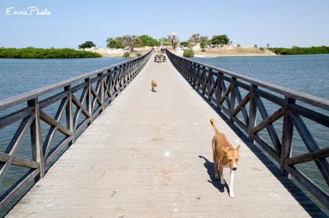 pont de joal